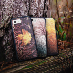 seasonal fall phone cases design